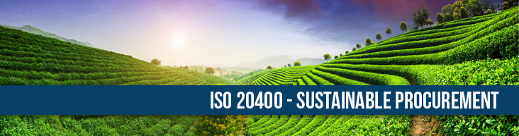 ISO-20400-Sustainable-Procurement-FI